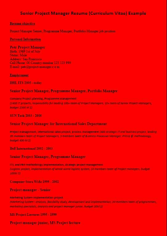 Resume (CV) Example Project Manager - Red Background Color